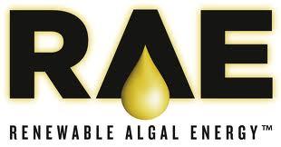 Renewable Algal Energy