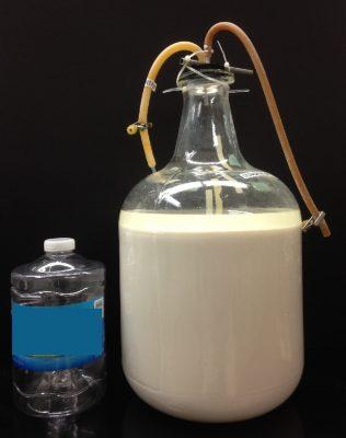 20L of fermentation mixture ready for nanoparticle separation. Photo courtesy of Oak Ridge National Laboratory.
